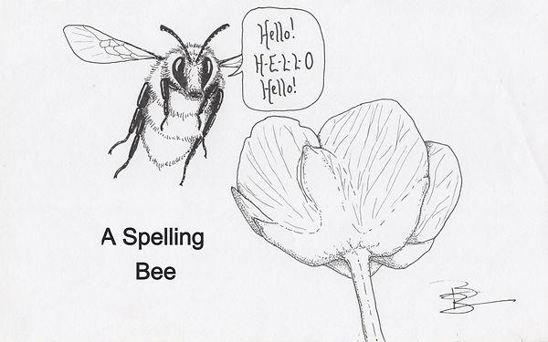 A Spelling Bee