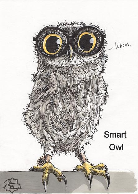 Smart Owl