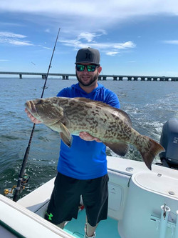Another grouper!