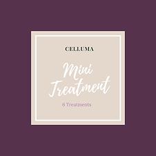 Mini treatment.png