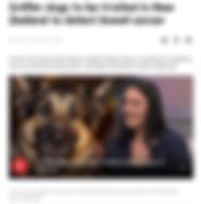 Screen Shot 2019-12-03 at 6.13.02 PM.png
