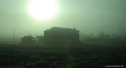 pastoral_sunrise