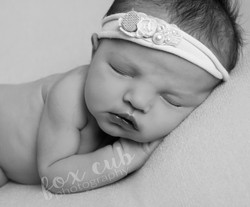 baby photography worcester