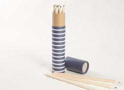 Cas de crayon de couleur