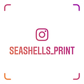 seashells_print_nametag.png