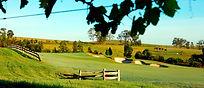 Vintage golf course