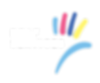 DSQ_Logo-Transparent-White Text.png