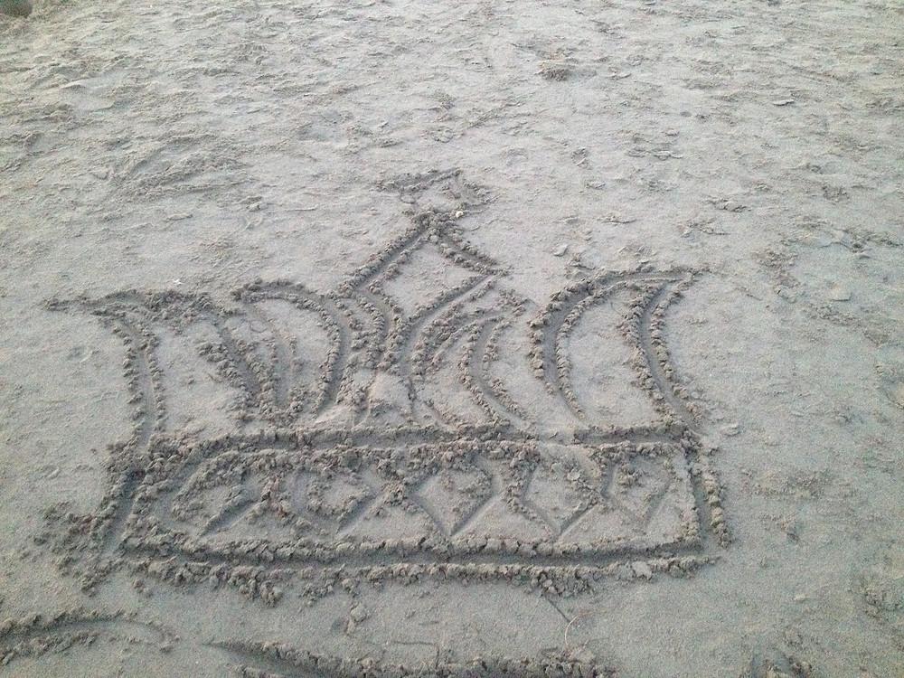 Photo: by JL Ropas ~ Santa Cruz, CA, Sand Crown