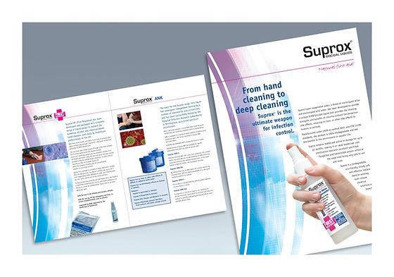 EHS leaflet design