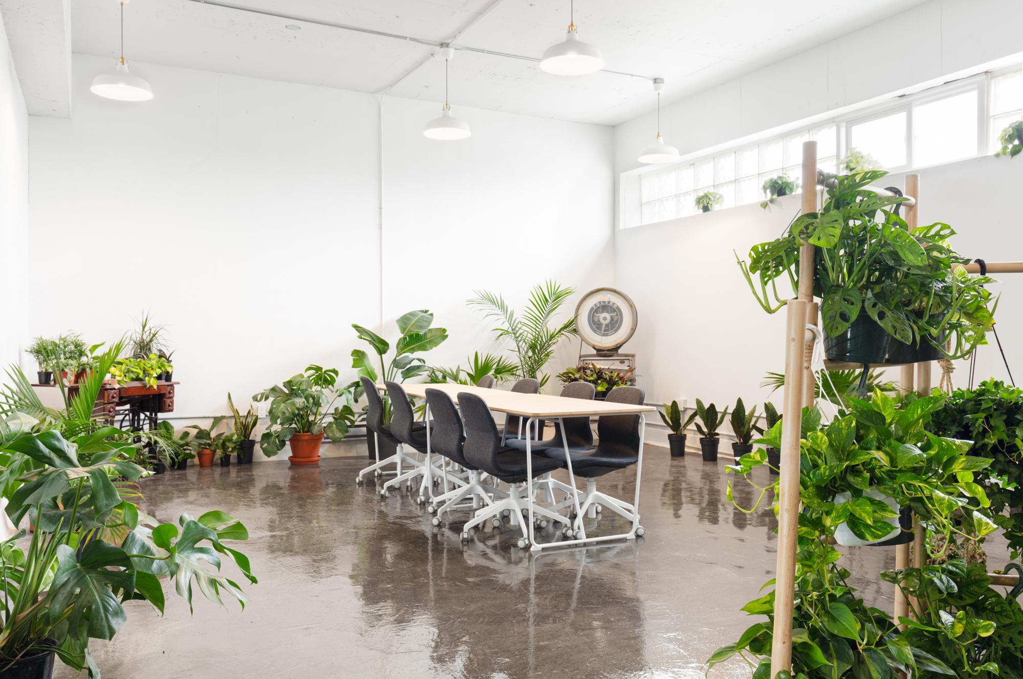 La_Jungle_Studio-9
