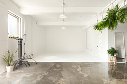 La_Jungle_Studio-3