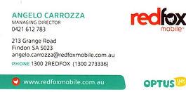 Red Fox.jpg