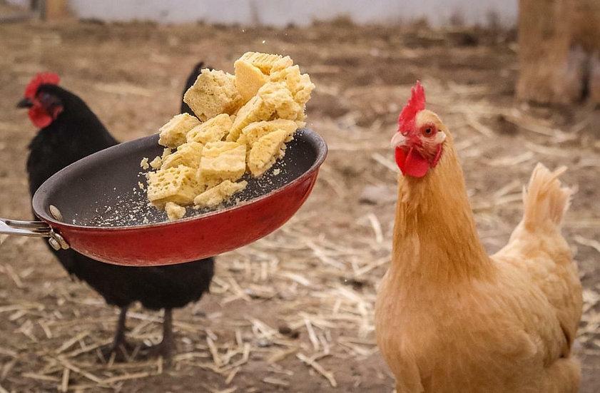 Freeze Dried Ostrich Eggs