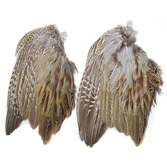 Pheasant Wings