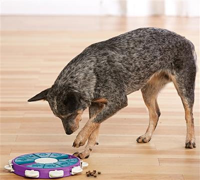 Nina Ottosson Dog Twister Puzzle