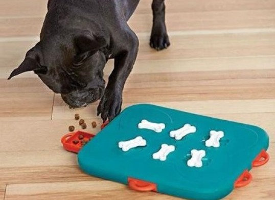 Nina Ottosson Dog Casino Puzzle