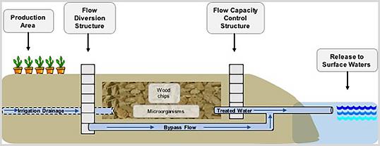 bioreactor schematic.png