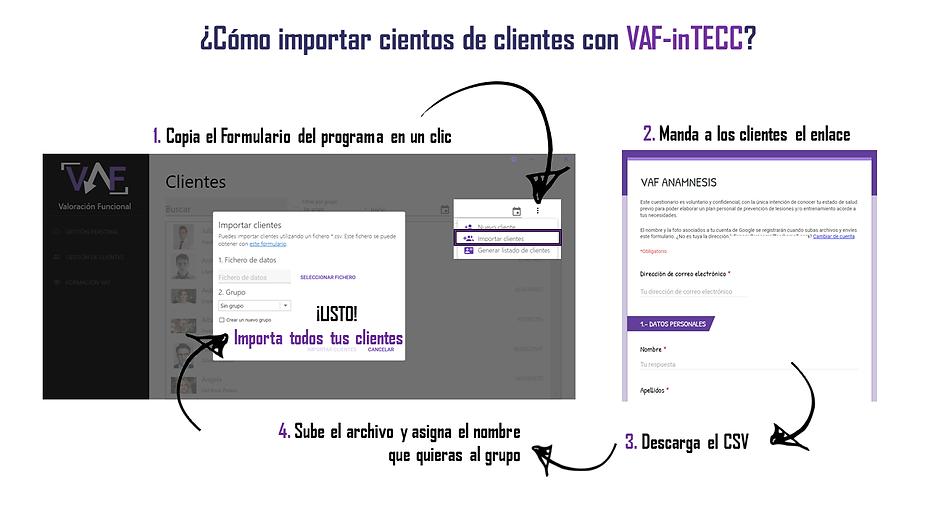 Importar clientes con VAF-inTECC.png