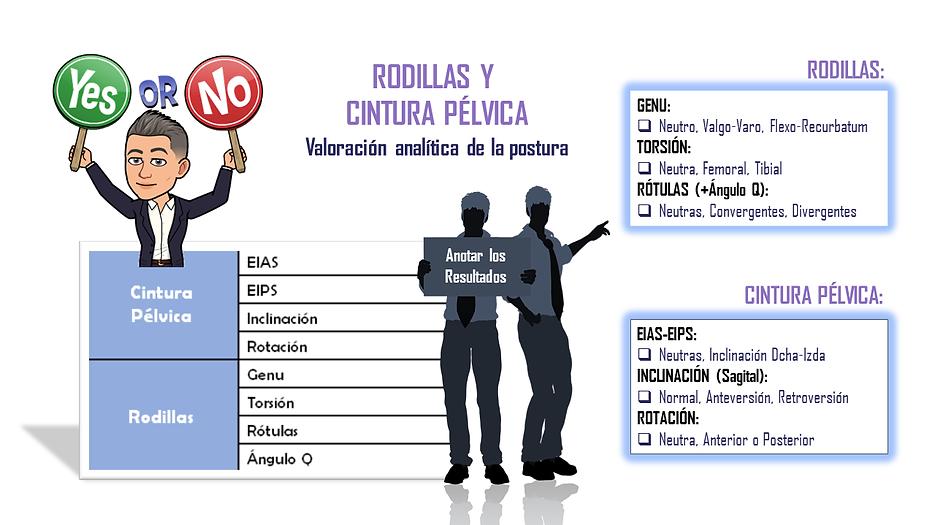2.6._EPE._Cintura_Pélvica_y_Rodillas.PNG