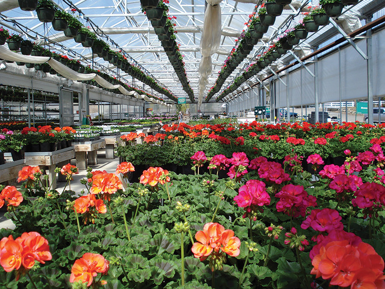 Pinehurst Resort Greenhouses