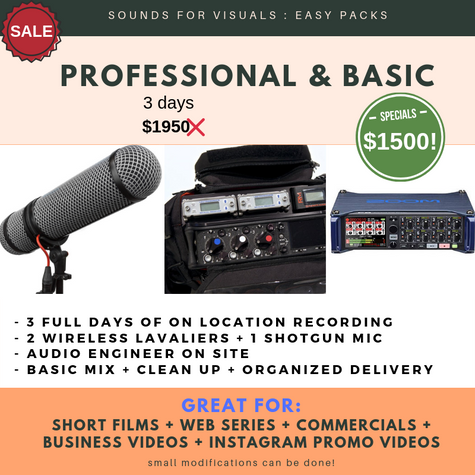 PROFESSIONAL ON LOCATION :: RECORDING & MIXING