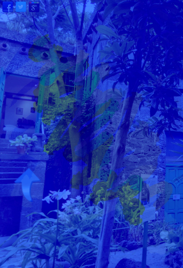 Visit the Frida Kahlo Museum in a 360-degree tour of the Casa Azul