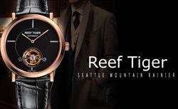 Classic Beauty of Art_ Reef Tiger Artist