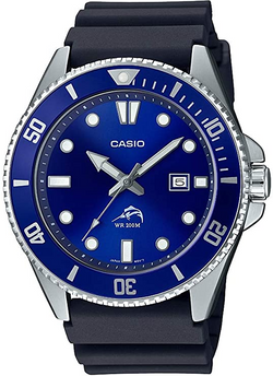 Casio Men's Diver Inspired Stainless Ste