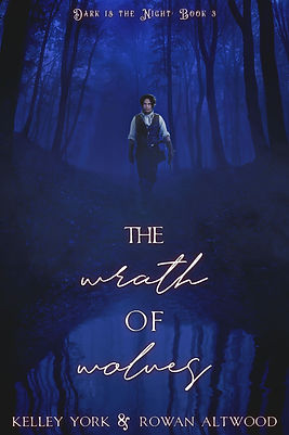 THE WRATH OF WOLVES ebook-1600x2400.jpg