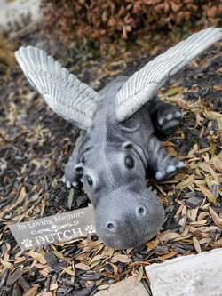 Angel Hippo