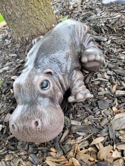Precious Hippo