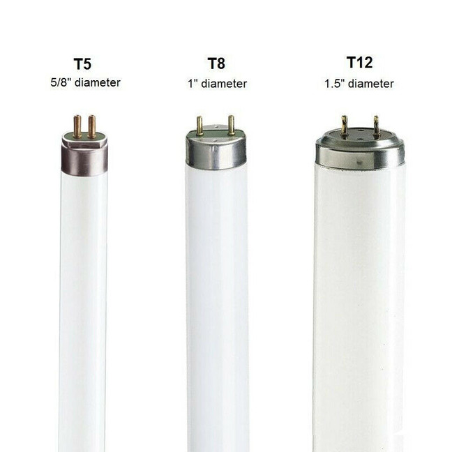 อะไรคือหลอดไฟ T5, T8 และ T12
