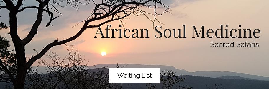 African Soul Medicine 3.png
