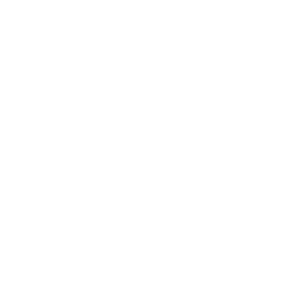 Alliance Services Logo.png