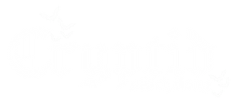 Cryptid sal image logo - white transparent- The Witchy Stitcher.png