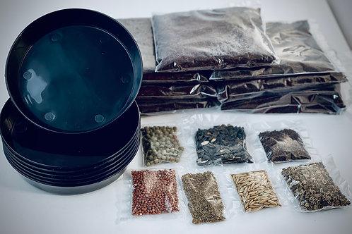 5 Day Microgreen Kit