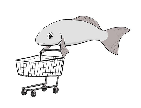 fish life drawing.png