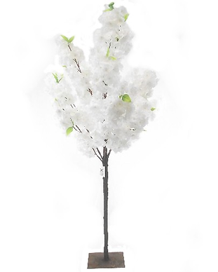 BLOSSOM TREE WHITE.JPG.png