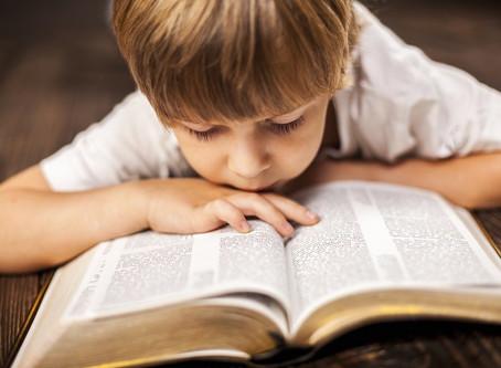Leitura e Memorização – Bíblia e Catecismo