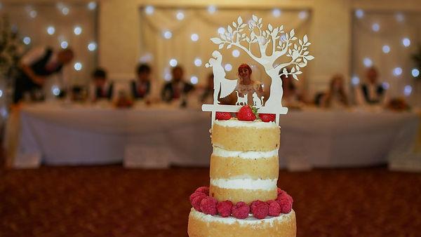 DSC00381 cake 2-1-5.jpg