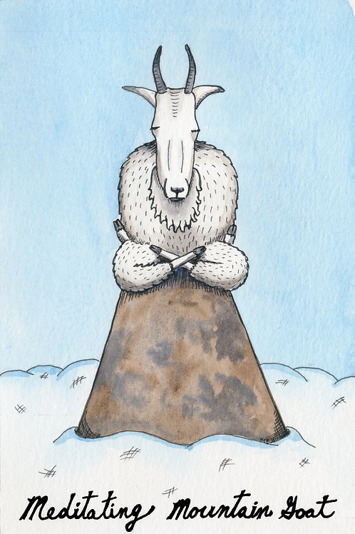 Meditating Mountain Goat