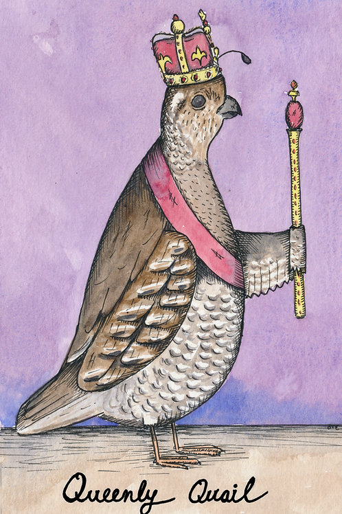 Queenly Quail