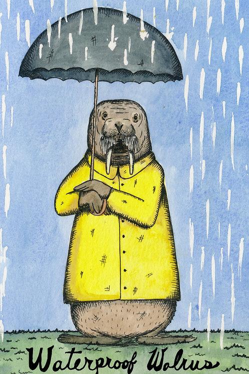 Waterproof Walrus