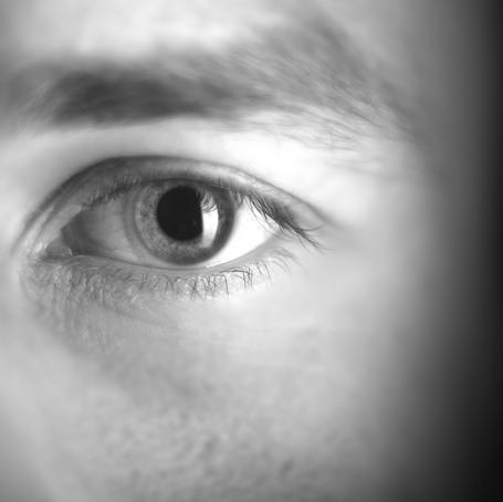 El ojo del editor, por Ruben Lerner