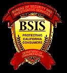 bsis-logo2.png