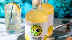 ELECTRIC GINGER VODKA MULE - 250ML