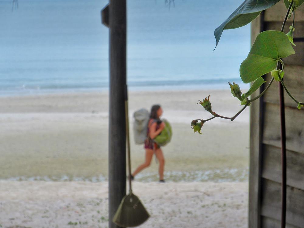 Zielony liść na rozmytym tle plaży i błękitnego morza, w środku kadru jest backpackerka z plecakiem z przodu i z tyłu