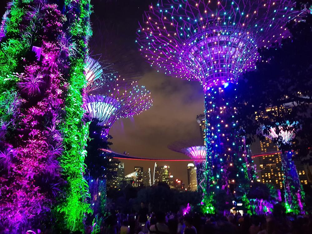Centrum Singapuru, Gardens by the Bay, hi-tech, technologia, noc, światła, kolonia brytyjska, Azja Południowo-Wschodnia