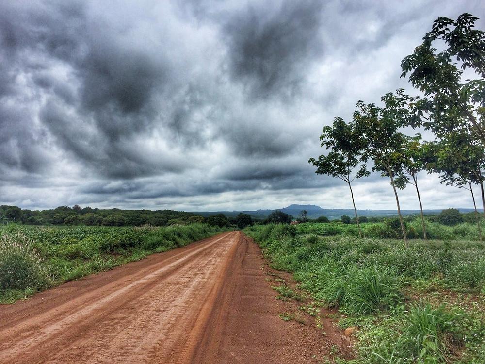 Piaszczysta droga w czerwonym kolorze biegnie aż po horyzont ku górom, niebo zasnute jest chmurami, dookoła zielone krzaki i drzewa