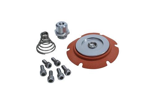 Carbureted Regulator Repar Kit, 13222
